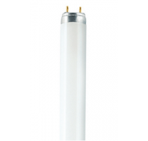TL-LAMP LUM T8 18W 590MM CO WOsram