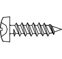 PLAATSCHROEF DIN 7981C-H * 4,20X19 ZN/B